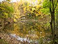 Kalksteinbruch im Herbst, Wildenfelser Zwischengebirge.jpg