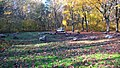 Kamienny krąg na polanie w Parku Słowiańskim w Szprotawie.jpg