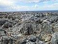 Karpaz - panoramio (3).jpg