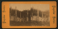 Kasa-an (Kasaan) village, from Robert N. Dennis collection of stereoscopic views.png