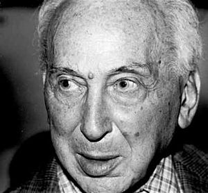 André Kertész - Kertész in New York, 1982