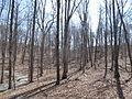 Kings Mountain National Military Park - South Carolina (8558899012) (2).jpg