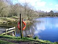 Kingsley Pond - geograph.org.uk - 352555.jpg