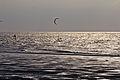 Kite surfer on the beach of Wissant, Pas-de-Calais -8077.jpg