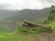 Koltigad cannon