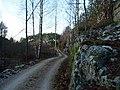 Kosvig - panoramio (1).jpg