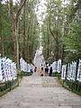 Kumano Kodo Kumano Hongu Taisha World heritage 熊野本宮大社104.JPG