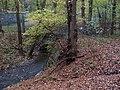 Kunratický les, most přes Kunratický potok (02).jpg