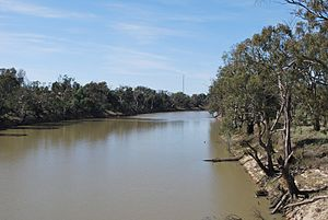 Wakool River - The Wakool River near Kyalite.