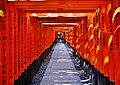 Kyoto Schrein Fushimi-Inari-taisha Torii 12.jpg