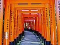 Kyoto Schrein Fushimi-Inari-taisha Torii 34.jpg