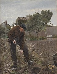 En mand som graver kartofler