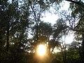 LA VALL DE SANT DANIEL (GIRONA) - panoramio (2).jpg