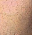 La jeune fille à la perle - Vermeer - détail de la pommette gauche.png