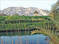 La montagne de Thèbes (Egypte) (2172107723).jpg