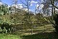 La nature au début du printemps (25705466344).jpg