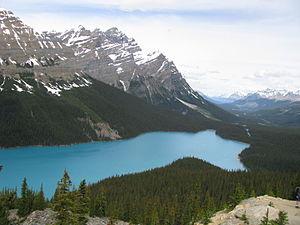 Lake - Peyto Lake, Alberta, Canada