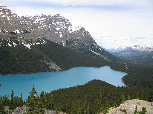 Lac Peyto (4)