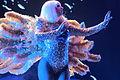 Lady Gaga ArtRave San Diego (14518908780).jpg
