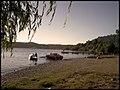 Lago Colico - panoramio - Salvador Contreras G… (2).jpg