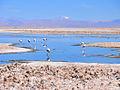 Laguna-chaxas-rodrigo-gonzalez-01.jpg