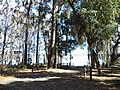 Lake Miccosukee Rococo Ramp 1.JPG