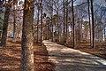 Lake Wheeler Park - panoramio (3).jpg