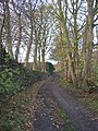 Lane to Cote Hill, Southowram - geograph.org.uk - 282120.jpg