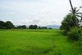 Langkawi, Kedah, Malaysia - panoramio (2).jpg
