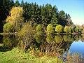 Lasdon Park and Arboretum, Somers, NY - IMG 1437.jpg