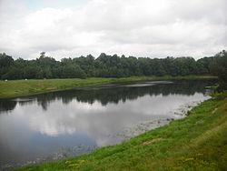 Laukaanjoki Jaamassa 1.jpg