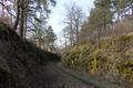 Lauterbach Blitzenrod Cutting Railway Vulkanradweg N.png