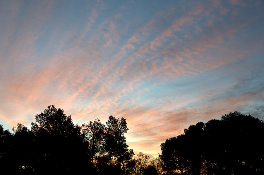 Lever de soleil sur Pélissanne (19 janv 2010 à 07 h 01)