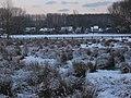 Liedekerke - Winters landschap langs de Dender 3.jpg