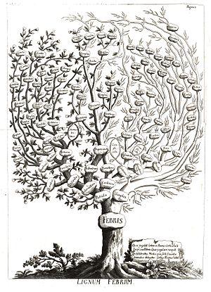 Francesco Torti - Lignum Febrium, a classificatory tree of fevers according to Torti (1756)