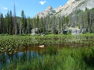 Lily Lake (Idaho)