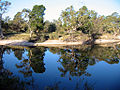 Little-Desert-Nationalpark Wimmera 2005.jpg