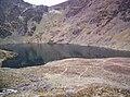 Llyn Cau - geograph.org.uk - 272903.jpg