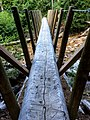 Log Bridge (19800161048).jpg