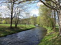 Lohr (river).JPG