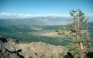 Long Valley Caldera - View from northeast rim of caldera