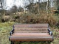 Long shot of the bench (OpenBenches 4299-1).jpg