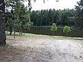 Lubiatowo (droga z Tuczna do Strzalin).jpg