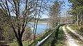Lungo lago Passante - panoramio.jpg