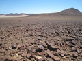 Macroscelides micus study site in eastern Goboboseb Mountains, northwestern Namibia.png