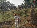 Maharana Pratap shooting.jpg