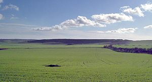 Maiden Castle, Dorset - Maiden Castle from the north