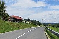 Male Rebrce Slovenia.jpg