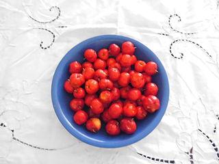 アセロラの果実