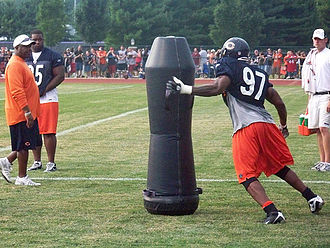 Mark Anderson (American football) - Anderson at Training Camp 2008